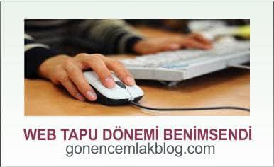 web-tapu-min